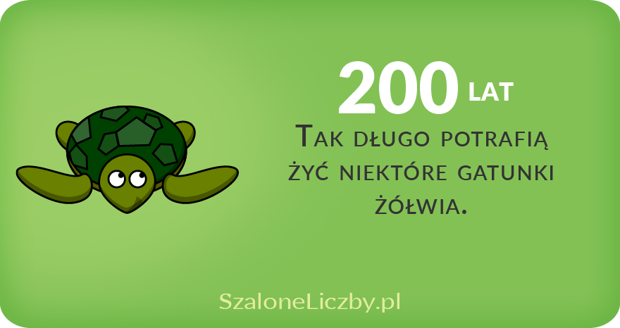 długość życia żółwia